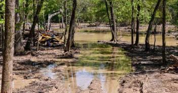 Exxon Cleanup