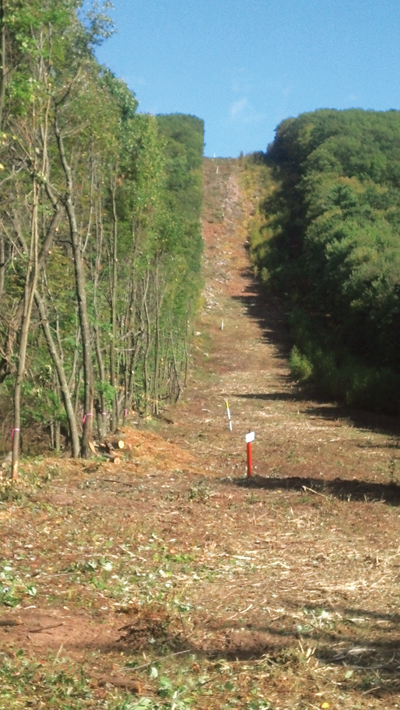 A cleared pipeline right of way needs regular maintenance.