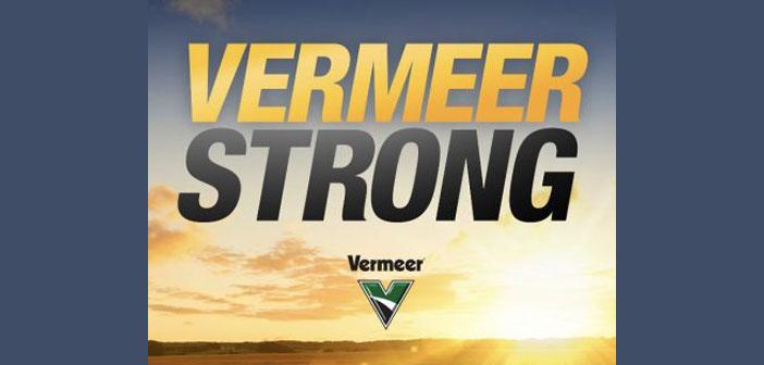 vermeer strong