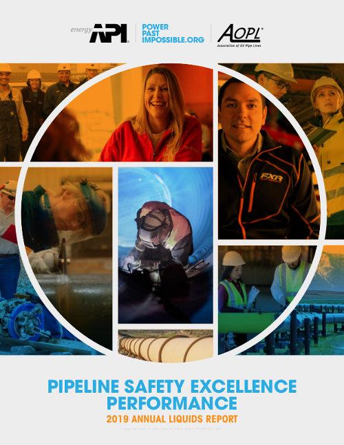 2019 AOPL-API Safety Report